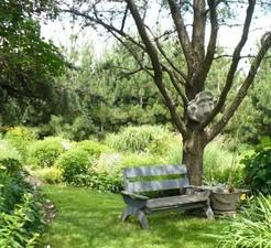Jardin de Paule et Roger Prise par Un membre de la société d'horticulture