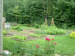 Jardin de Paule et Claude   Prise par Nicole Sanschagrin