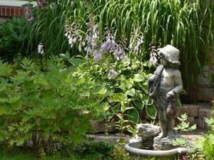 Jardin de Francine Prise par Nicole Sanschagrin