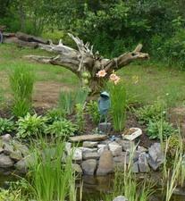 Jardin de Diane et Marianne Prise par Nicole Sanschagrin