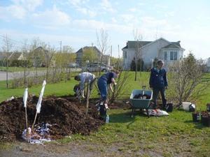 Projet communautaire  2009  - Le parc Jean-Guy Provencher embelli par nos bénévoles -  Prise par Nicole Sanschagrin