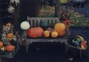 Concours d'halloween 1999 chez Arlette Guy. Prise par Inconnu