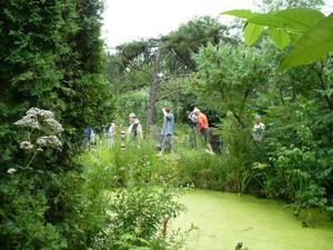 Les Jardins du Grand Portage à St-Didace; un  petit étant dans une luxuriance de verdure Prise par Nicole Sanschagrin