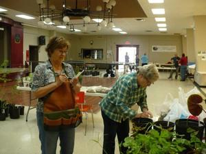 Nos conseillères identifient les plantes et évaluent leur coût. Prise par Nicole Sanschagrin