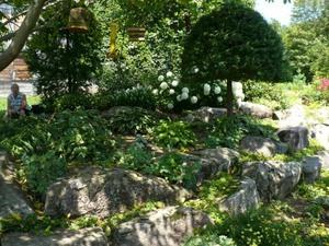 Les Jardins de Carole et Gérard à St-Basile. Prise par Nicole Sanschagrin