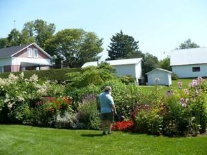 Les Jardins : « Fleurs Alain fini »  à St-Basile Prise par Nicole Sanschagrin