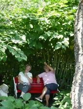 Les Jardins : « Fleurs Alain fini »  à St-Basile. - Moment de détente et de rire! Prise par Nicole Sanschagrin