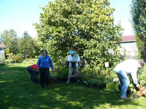 Échange 2011 - Un beau choix de plantes et de beaux sourires. -  Prise par Nicole Sanschagrin
