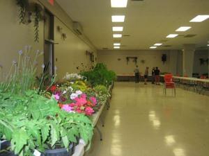 Comme toujours, le choix des plantes est très varié. Prise par Poline Rousseau