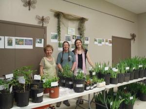 Carol Anne nous offre un grand choix de plantes de qualité. Prise par Catherine Sylvain