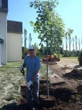 Ce gentil bénévole semble chanter : « J'ai planté un chêne…. » Prise par Catherine Sylvain