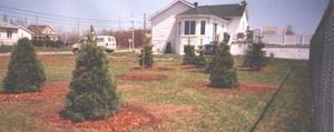 Création du Parc des Lilas en mai 2003. Prise par Société d'horticulture