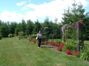 Des fleurs, des fleurs, plein de fleurs! - 12 août 2006 Prise par Paule Poulin