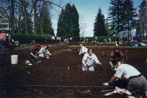 Les femmes au travail Prise par Un membre de la société d'horticulture