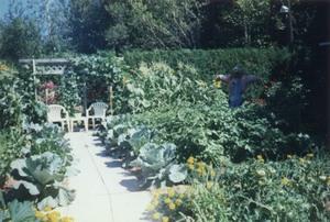 Visite chez Jeanne et Réjean Boisvert à St-Apollinaire en août 1997. Prise par Inconnu