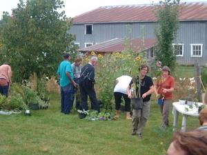 Quelle joie d'avoir des nouvelles plantes dans nos jardins (septembre 2003) Prise par Martin Gosselin