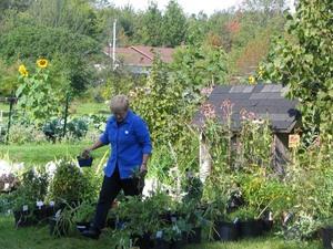 Arlette Guy juge les belles plantes.  Septembre 2005 Prise par Claude Bergeron