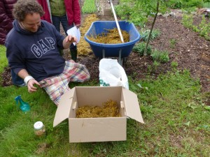 1 SHSA Atelier champignons 1:HD 2-06-13: